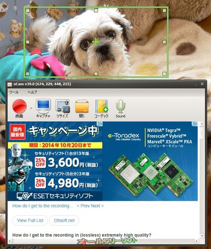 Windows 10に対応したoCam 39.0