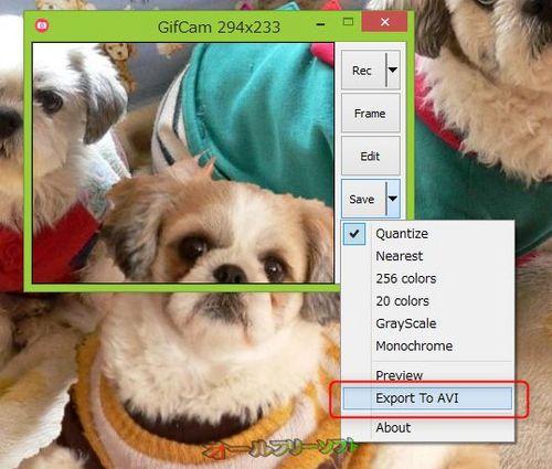 AVIファイルへのエクスポートに対応したGifCam 3.0