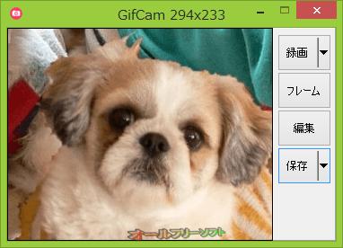 GifCam の日本語化ファイルが公開されました。