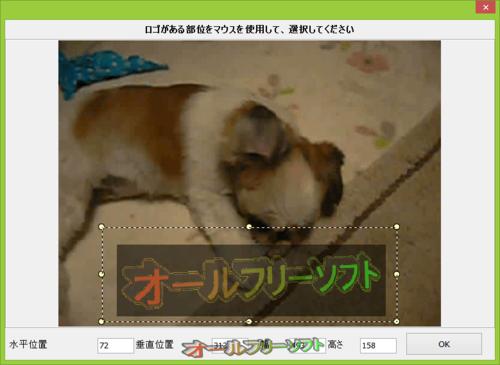 Video Logo Remover の日本語化ファイルが公開されました。